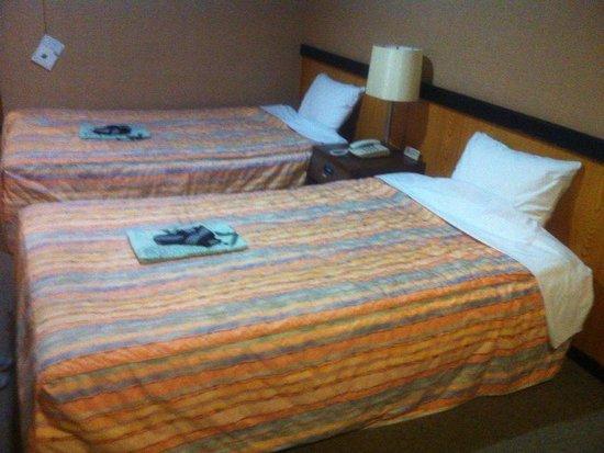 Hotel Asyl Nara Annex: 部屋