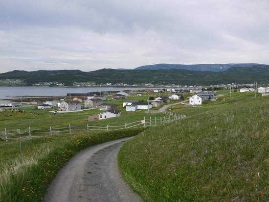 Gros Morne Suites: Blick auf die Suites (linker Bildrand) vom Salmon-View-Point aus