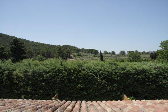Hotel Restaurant Fabian des Baux: Les oliviers