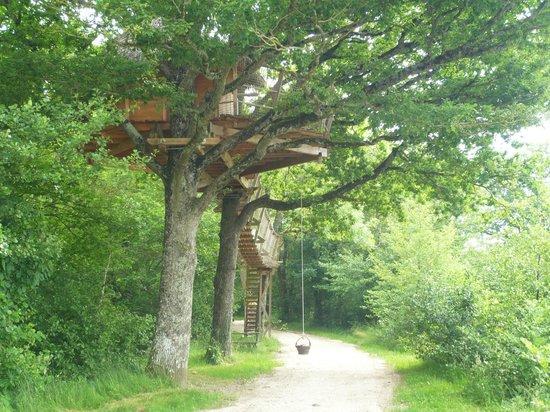 Le Domaine de la Dombes : Cabane dans les arbres