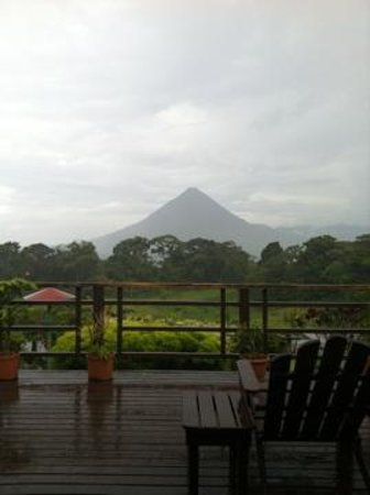 Hotel Jardines Arenal : View from restaurant
