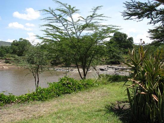 Mara River by Karen Blixen Camp