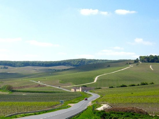 C La Vigne- Authentic Champagne Tour: Scenic road at the Champagne region