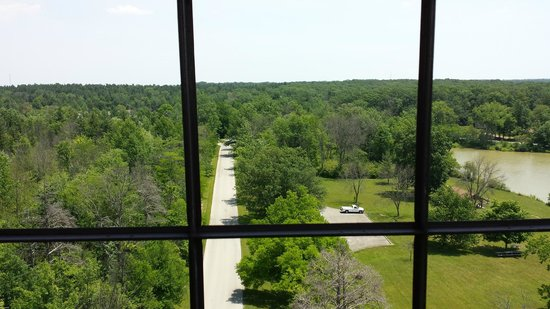 Ouabache State Park: Picture from the top of the tower.