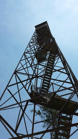 Ouabache State Park: Fun watch tower to climb.