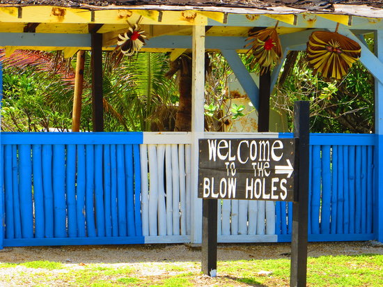 Blow Holes: sign