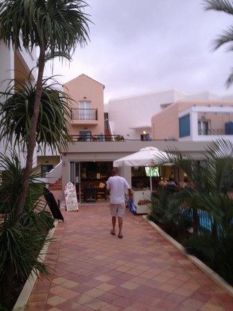 Dedalos Hotel: Malia Dedalos Reception entrance