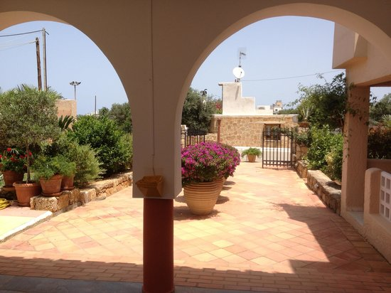 Dedalos Hotel: Sun bathing on grassed area