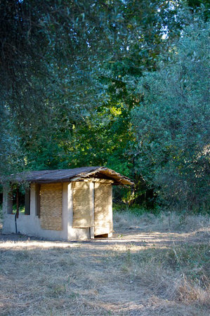 Andalucia Yurts: olive grove shower
