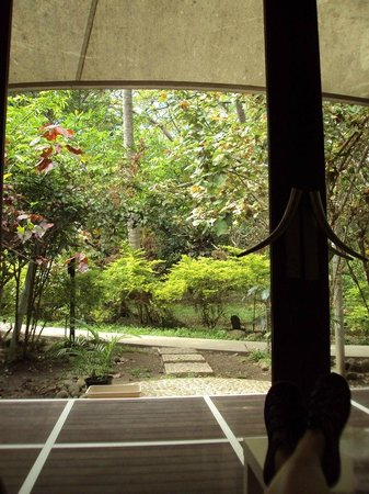 The Fiji Orchid : View from the seating area in our bure