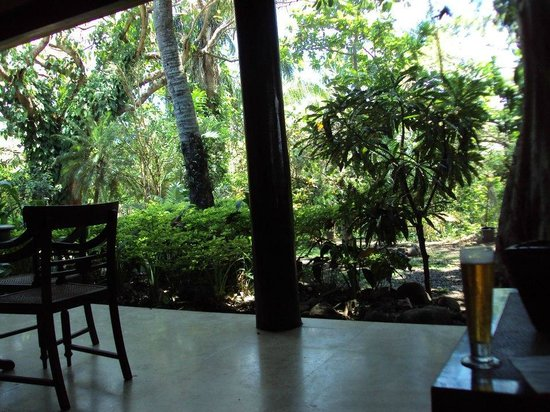 The Fiji Orchid : View in the common area/lobby/house