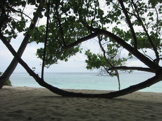 Filitheyo Island Resort: Strand Ost
