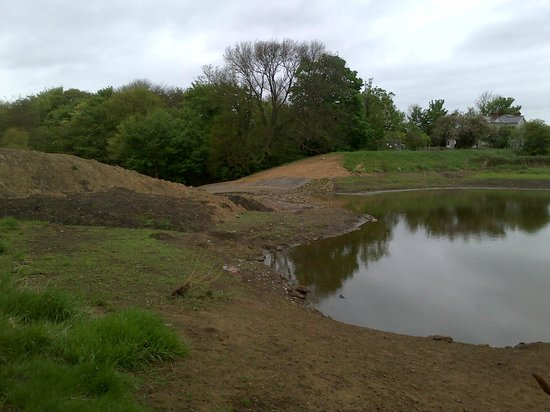 Firsby Common Local Nature Reserve