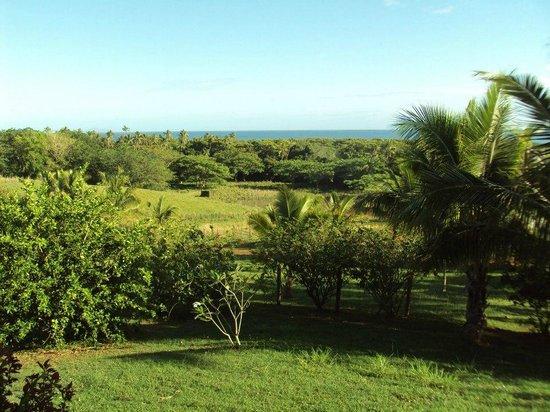 Palmlea Farms Lodge & Bures: View form the shared/common area