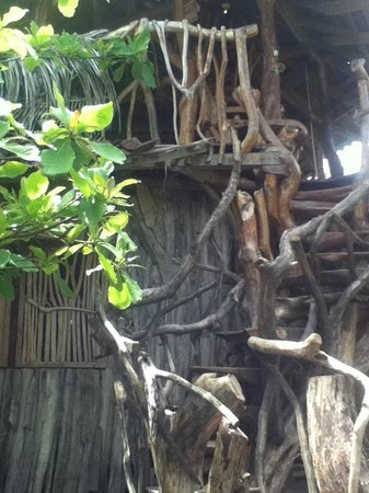 Little Morgan's: Treehouse close-up