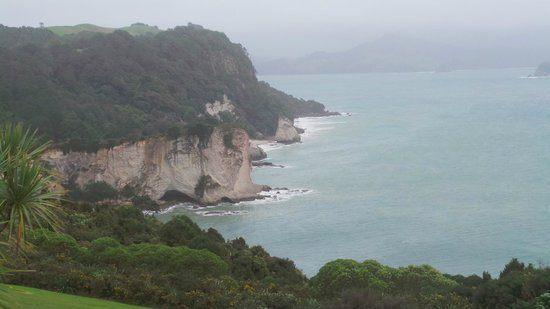 Auckland Zoo: catedral cove