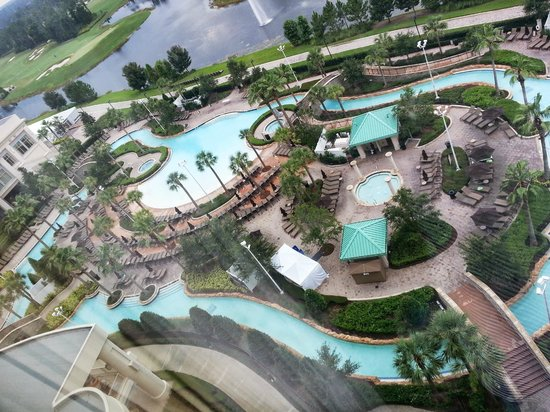 pool view from 16th floor picture of hilton orlando. Black Bedroom Furniture Sets. Home Design Ideas