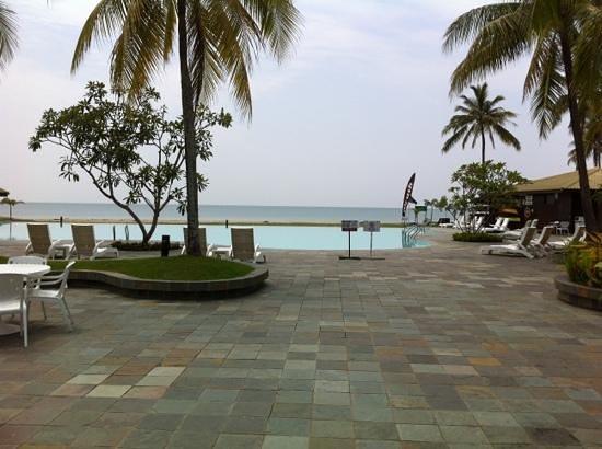 Palm Beach Resort & Spa : backyard