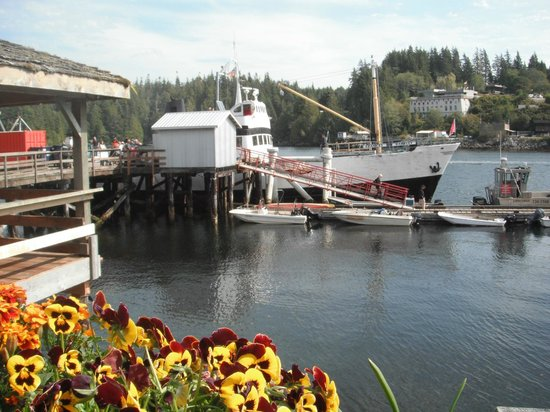 Lady Rose Marine Services: Bamfield