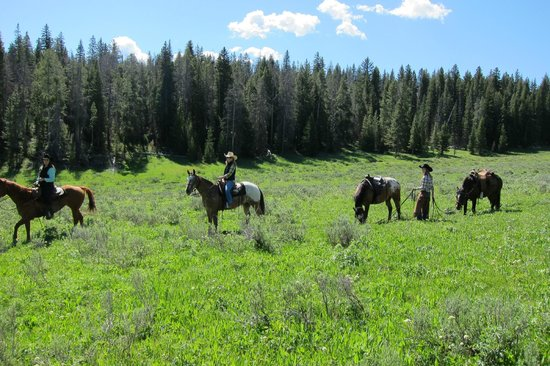 Nine Quarter Circle Ranch: riding in the hills around the ranch