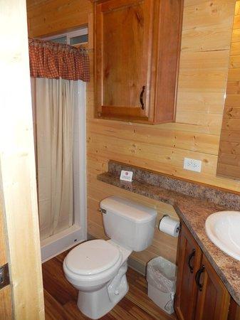 Yellowstone Koa Mountainside : Bathroom with shower