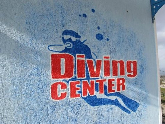 Aegean Divers Dive Center - Day Excursions: Αrtistic concerns
