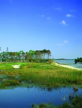 Bay Creek Vacation Rentals: Golf Course
