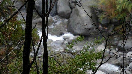 Refugio del Tricahue: Internarse por estos lugares y solo escuchar la Naturaleza!