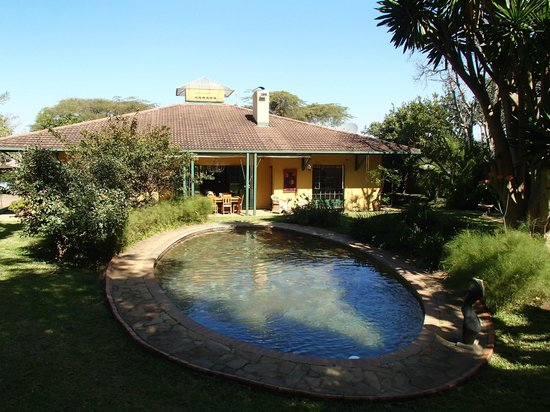 Jacana Gardens Guest Lodge: Garden with pool