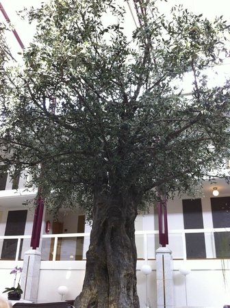 Best Western Plus Hotel Fellbach-Stuttgart: An artificial olive tree in the coffee/tea area. Quite nice..