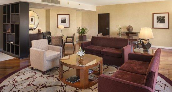 Park Hyatt Mendoza: Living habitación Park Suite