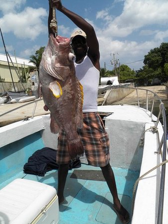 Deep Drop Fishing Charters : 40+ Pound Grouper!