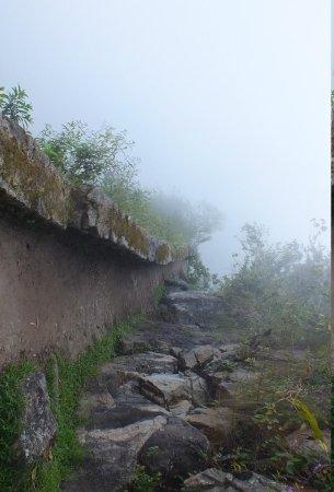 Inca Bridge : Trail to the drawbridge in the fog