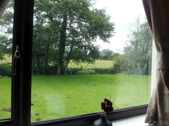 Ewenny Farm Guest House: Countryside view