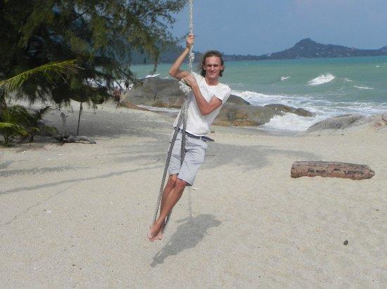 Amity Bungalow : на пляже ламаи