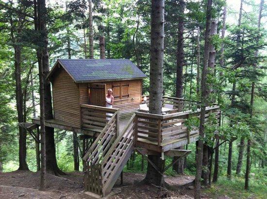 Parc Mont Oz' Arbres : cabane épicéa