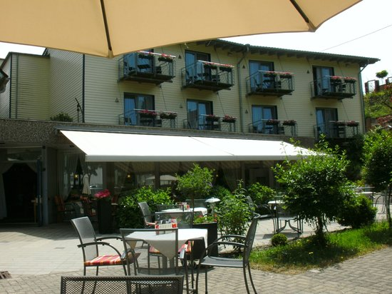 Hotel Waldblick: Across the road