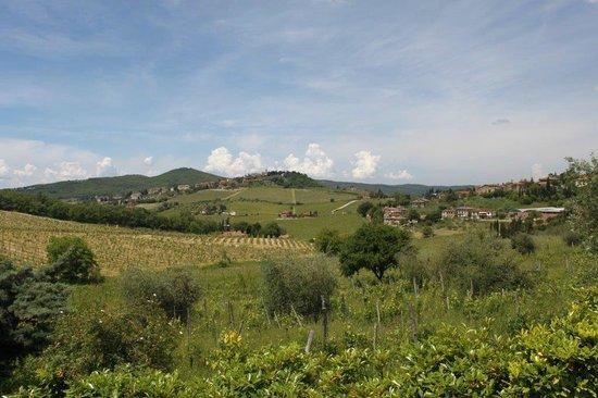 Residence Villa Miranda/Santa Cristina : Amazing views of Radda from the Pool