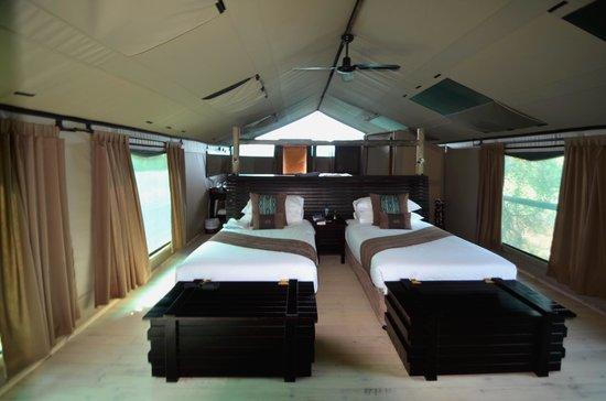 Pom Pom Camp: chambre