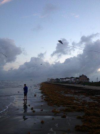 Holiday Inn Club Vacations Galveston Beach Resort: Kite Flying on the beach
