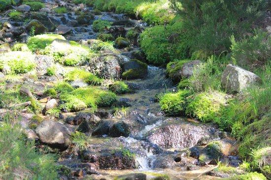 Camino de la Fuentona: subida a la Laguna Negra