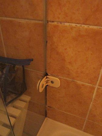 Hotel Faisst: schimmels duche
