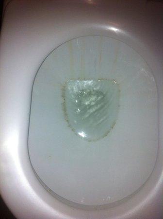 Hotel Arenaa Mountbatten: Filthy toilet