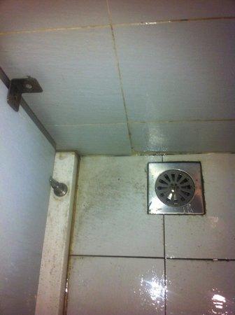 Hotel Arenaa Mountbatten: Dirty floor in shower