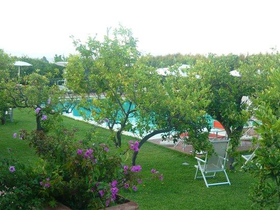Agriturismo Galea: la piscina vicinissima e quasi nascosta dal bel giardino