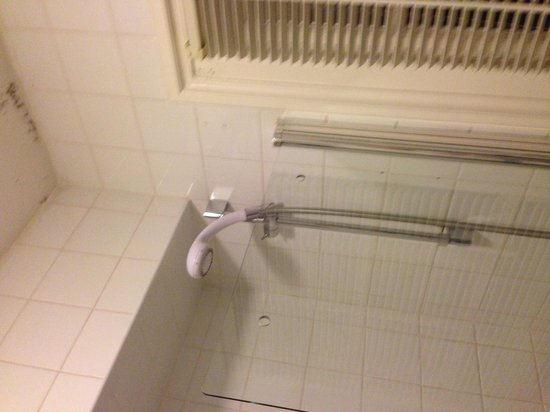 ibis Styles Reading Centre: Dirty shower