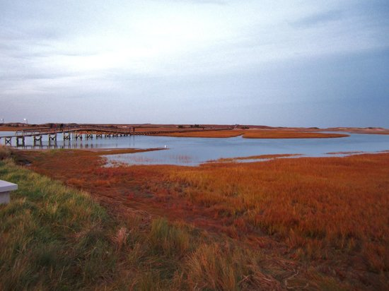 The 1750 Inn at Sandwich Center : BEAUTIFUL marshes & beach in Sandwich.