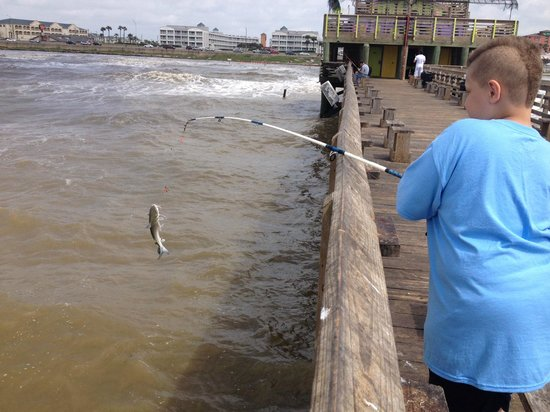 Peer 61 picture of galveston 39 s 61st street fishing pier for Saltwater pier fishing