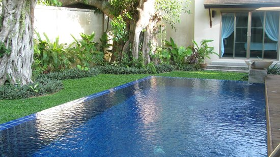 Two Villas Holiday Oriental Style Naiharn Beach : Pool and Garden
