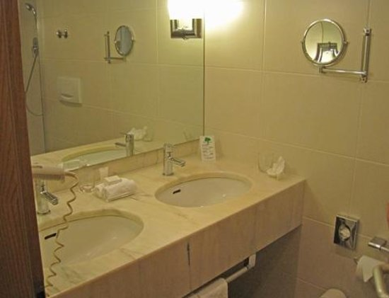 Dolce Bad Nauheim: Hairdryer, double sinks, magnifying mirror, great shower